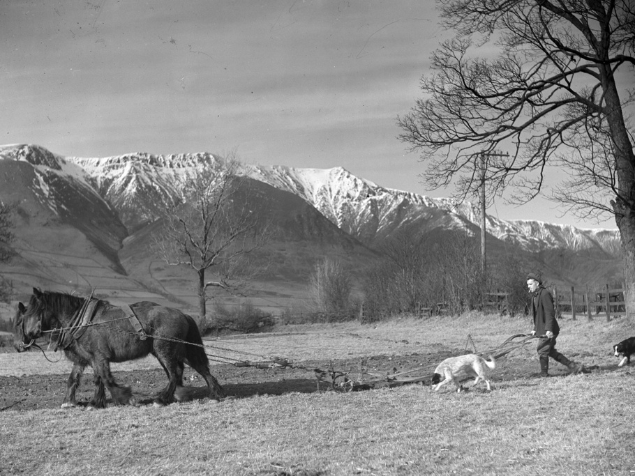 Figure 1: A typical Hardman image, showing a farmer using a horse drawn plough in the Vale of St. John circa 1940. Reproduced by courtesy Museum of Lakeland Life & Industry, Kendal, Cumbria.