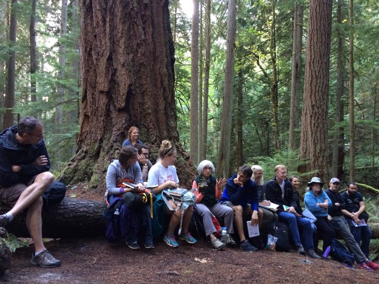 CEHC retreaters share their favorite teaching books in the woods outside Pack Forest Research Station, Washington. Photograph courtesy of the author.