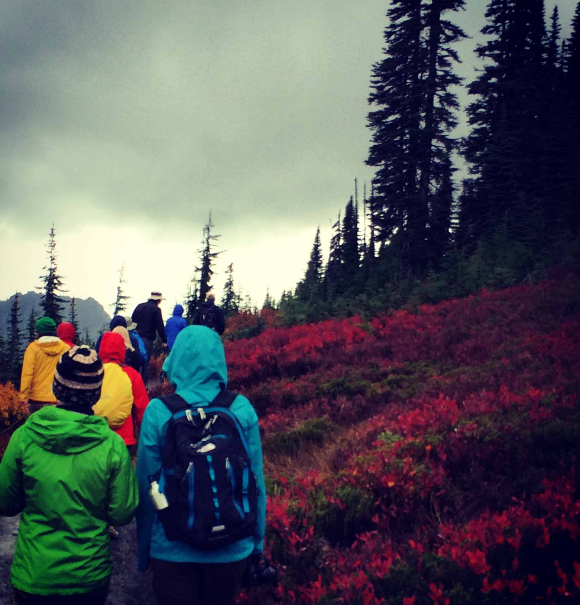 CEHC retreaters hike to Mt. Rainier, Washington. Photograph courtesy of the author.